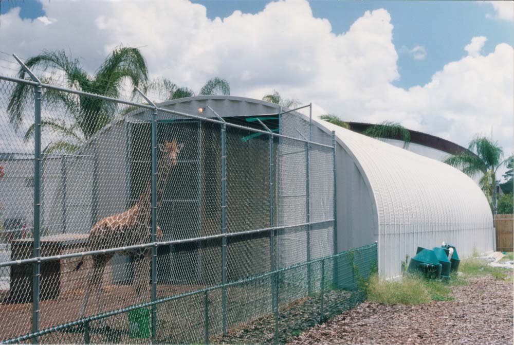 Steel Building Zoo